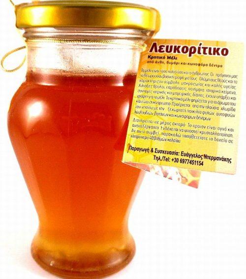 Αμφορέας Με Θυμαρίσιο & Άνθεων Μέλι 240γρ