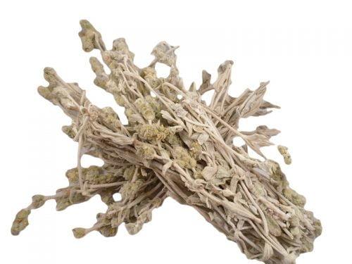 Μαλοτήρα (Άσπρο Τσάι Βουνού) 50gr
