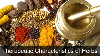 Therapeutic Characteristics Of Herbs